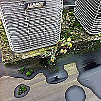 Preventief onderhoud zorgt voor een blijvend goed plat dak.
