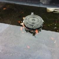 Jaarlijks onderhoud van uw dak voorkomt veel ellende.