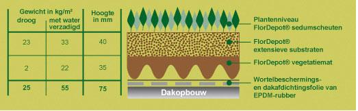 Het Flordepot Sedum groendaksysteem met licht gewicht van slechts 55 kg/m²